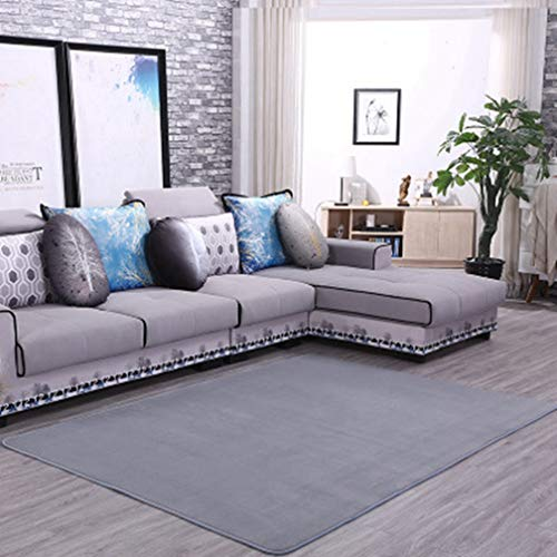 (Solid Square Area Rugs Soft Living Room Children Bedroom Rug Coral Fleece Anti-Slip Carpets Home Decor Modern Indoor Outdoor Runners Nursery Rugs 5' X 5')