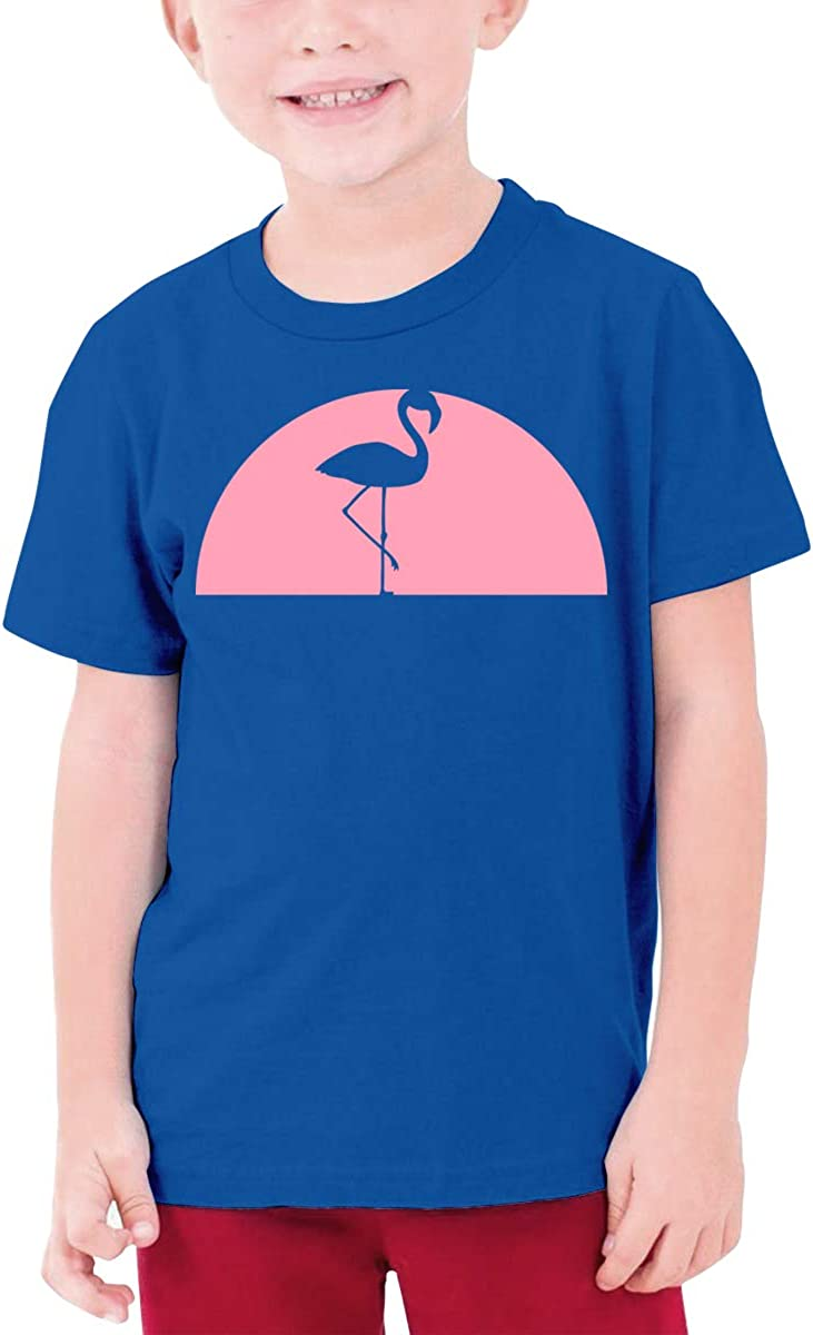 Pink Semicircle Flamingo Boys Short-Sleeved Shirts