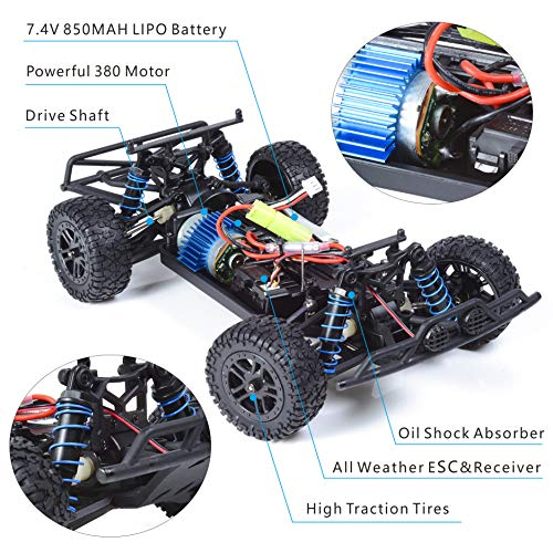 Buy the best electric rc car