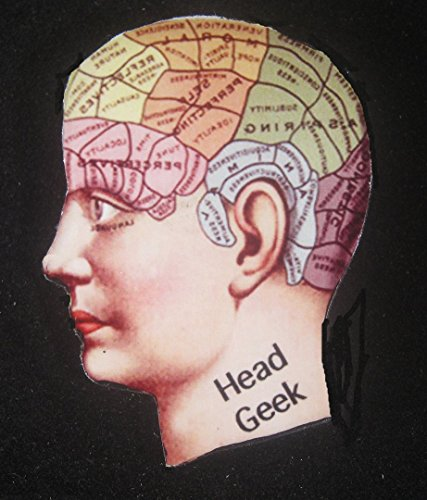 head-geek-pin-handcrafted-wood-computer-nerd-gift-phrenology-new-job-computer-genius-co-worker-gift-