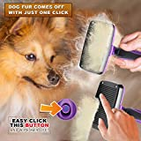 GM Pet Supplies Self Cleaning Slicker Brush | This