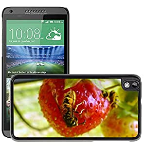 Hot Style Cell Phone PC Hard Case Cover // M00116647 Wasp Strawberry Ecology Insect // HTC Desire 816