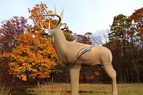 Field Logic Glendel Buck Big 3D Lifelike Deer w// Replaceable Core Archery Target