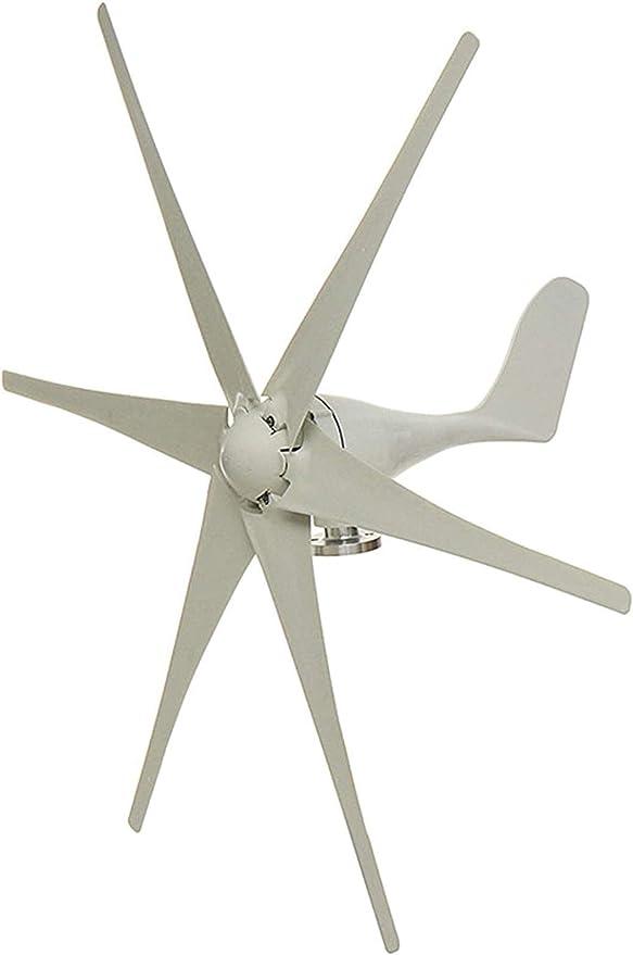 RDJM Turbina eólica 9000W 6 láminas de Fibra de Nylon turbinas de Viento, generador Horizontal del Viento Molino de Viento generador de energía Turbinas de Carga for Hom 12V / 24V / 48V, 24V