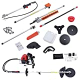 BEAMNOVA Gas Powered Cordless Pole Saw Kit for Tree Trimming with Hedge Trimmer Combo Pruner Replacement Blades Harness
