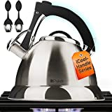 Pykal Whistling Tea Kettle with iCool - Handle, Surgical Stainless Steel Teapot for All Stovetops, 2 Free Infusers...