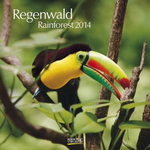 Regenwald 2014 Broschürenkalender