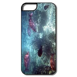 PTCY IPhone 5/5s Designed Fashion Bahamas Fish