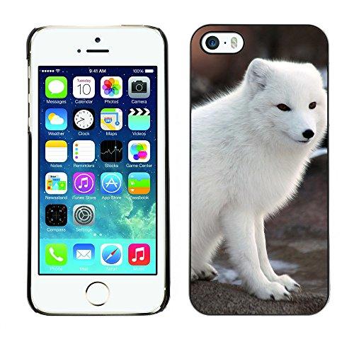 Premio Sottile Slim Cassa Custodia Case Cover Shell // F00008739 Loup // Apple iPhone 5 5S 5G