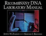 img - for Recombinant DNA Laboratory Manual book / textbook / text book