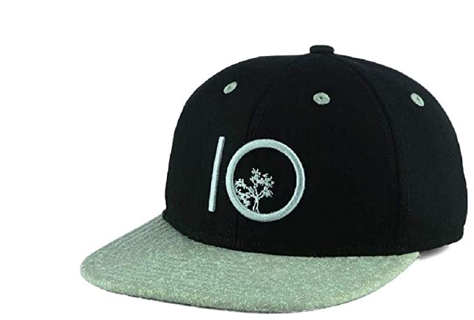 c722044171ac7 ... reduced tentree 10 tree classic black gray snapback cap hat b3bec d8679