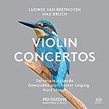 Ludwig van Beethoven & Max Bruch: Violin Concertos