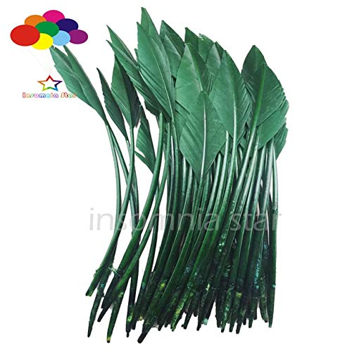 Maslin 50 pcs Arrow Turkey Feathers 25-30 CM/10-12 INCH Beautiful for Jewelry Carnival Decorative DIY Costume mask Headdress - (Color: Army Green) -