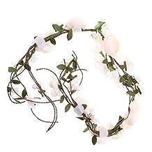 Dovewill Boho Style Elegant Rattan Flower Floral Cane Wreaths Hair Garland Headwear Hair Accessories