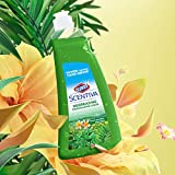 Clorox Scentiva Dishwashing Liquid Soap | Smells Great & Cuts Through Grease Fast | Quick Rinse Formula Washes Away Germs | A Powerful Clean You Can Trust, Fresh Brazilian Blossoms, 26 oz - 6 Pack
