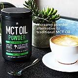 Mct Oil Powder with Prebiotic Acacia Fiber - Keto