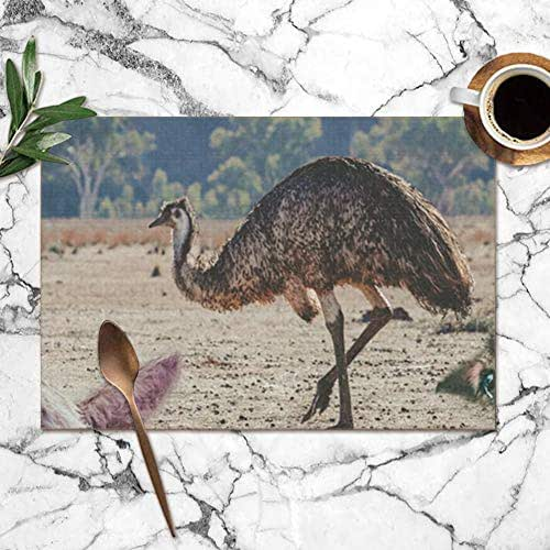 X-Large Collage Animals Living Australia Emu Koala Wildlife Funny Table Placemats for Dining Table,Washable Table Mats Heat-Resistant(12X18 Inch) Set of 6