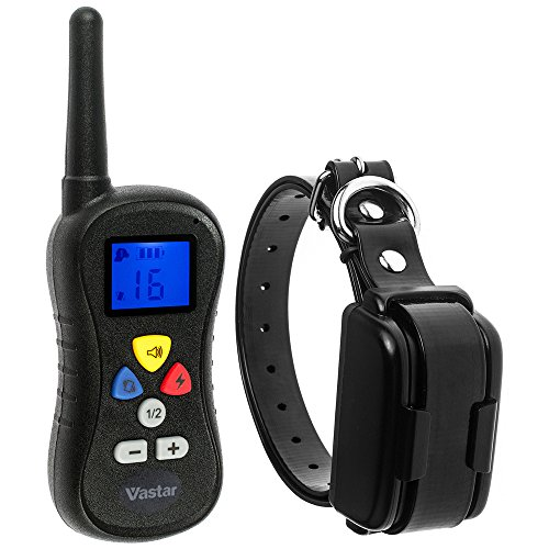 Dog Training Shock Collar Amazon
