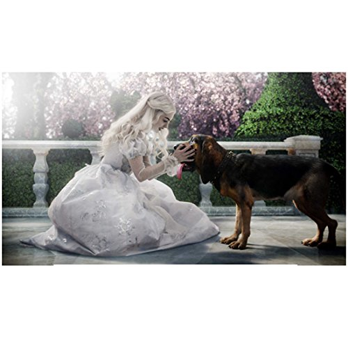 Alice in Wonderland Anne Hathaway as the White Queen with Bayard the Bloodhound 8 x 10 Inch ()