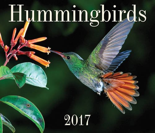 Hummingbirds 2017