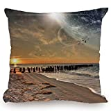 Throw Pillow Cushion Cover,Space,Magical Solar Eclipse on Beach Ocean with Horizon Sun Moon Globe Gulls Flying View,Cream Orange,Decorative Square Accent Pillow Case