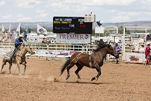 24 x 36 Giclee print of A roper stalks his wild-horse target at a large outdoor rodeo that's a feature of the annual in this case 75th anniversary Jubilee Days - District The At Target