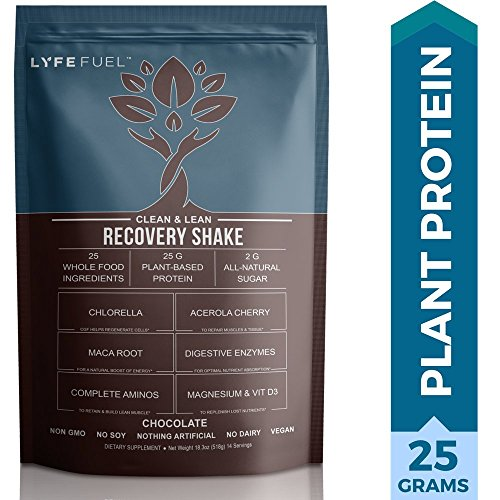 Plant Based Recovery Shake – Clean & Lean Post Workout Drink for Men & Women by LyfeFuel – Complete Vegan Protein Powder, BCAAs & Superfoods to Build Muscle & Reduce Soreness (Chocolate – 1 pound)