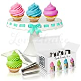 Love2bake Cupcake Decorating Tip Set, Classic Stainless Steel Decorating Tips, Closed Star, Open Star, French, Round/Plain, X-Large