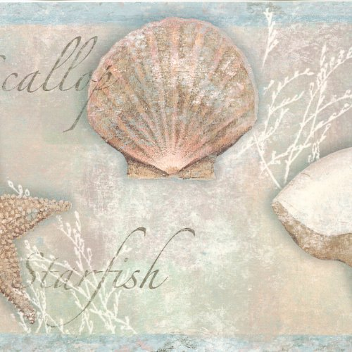 Chesapeake BBC46051B Quinten Seashells Toss Wallpaper Border, Blue