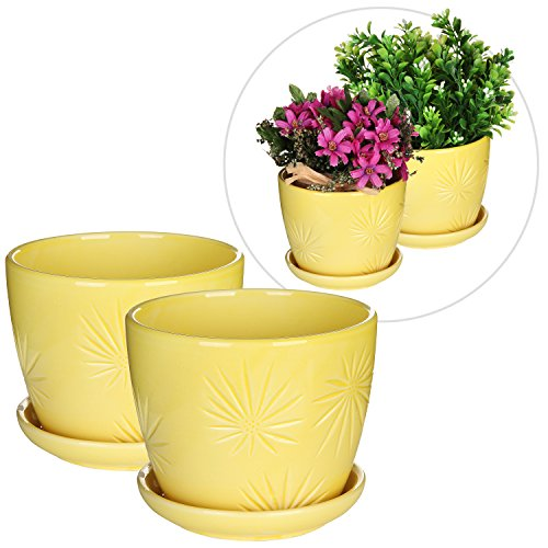 Set of 2 Yellow Sunburst Design Ceramic Flower Planter Pots / Decorative (Saucer Yellow Flowers)