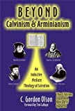 Beyond Calvinism & Arminianism: An Inductive, Mediate Theology of Salvation (Paperback)