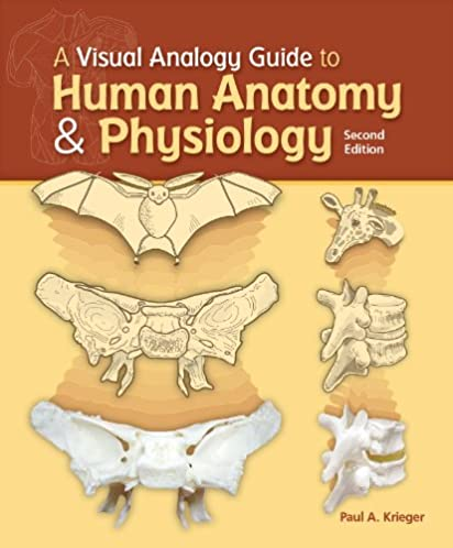 a visual analogy guide to human anatomy and physiology paul a rh amazon com a visual analogy guide to human anatomy & physiology 3e visual analogy guide to human anatomy & physiology 3e edition 3rd