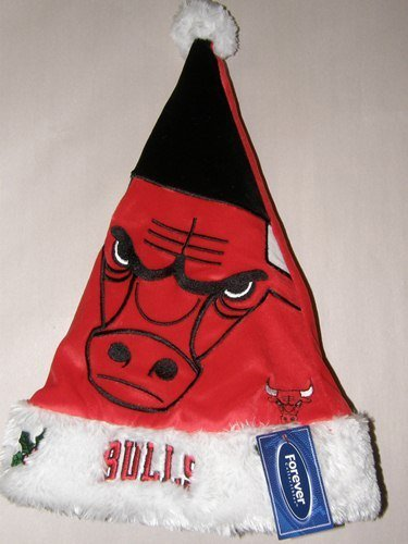 NBA Chicago Bulls Santa Hat, One Size, Red by Forever Collectibles