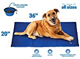 Unleashed Pets Large Self Cooling Pressure Activated Pet Cooling Gel Pad Mat + Collapsible Food Bowl for Dogs - Cats - all Pets - Non-Toxic - Perfect for Travel - Floor - Couch - Car Seat - Pet Bed & Kennel