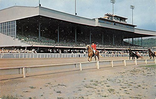 Monticello Raceway Grandstand of Harness Racing Track Monticello, New York, Postcard
