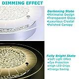 Flush Mount Ceiling Light Ceiling Lamp Dimmable LED