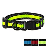Mile High Life Night Reflective Nylon Dog Collar 3 Colorway (Large, Black/Lime)