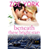 Beneath These Bright Stars: Evie and Liam's Wedding (Wardham Book 8)