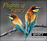 Flights Of Fancy 2018 Boxed/Daily Calendar (CB0274)