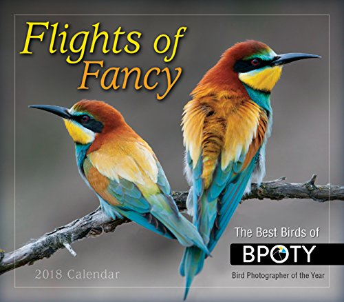 Flights Of Fancy 2018 Boxed/Daily Calendar (CB0274)