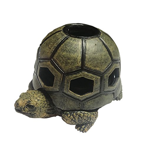 DHS S Turtle Outdoor