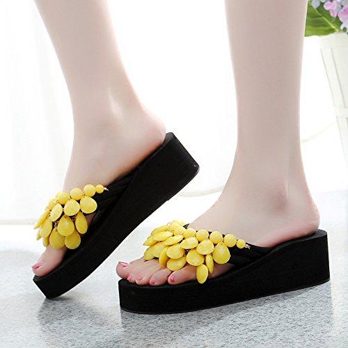 Señoras de red playa inferior grueso Coral calzado y moda mujer zapatillas antideslizante Sandalias chanclas Zapatillas awERZyqdRn