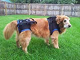 Walkabout Combination Harness (xlarge)
