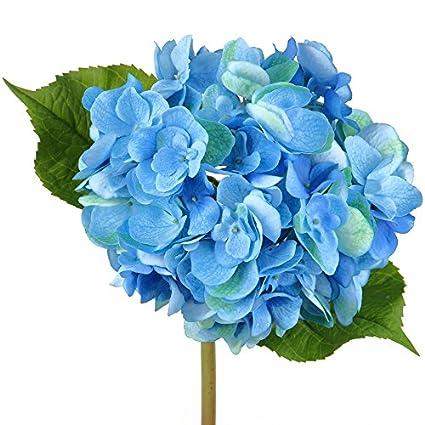 Amazon rinlong blue real touch hydrangea silk flower stem diy rinlong blue real touch hydrangea silk flower stem diy crafts floral arrangements home wedding decor bridal mightylinksfo