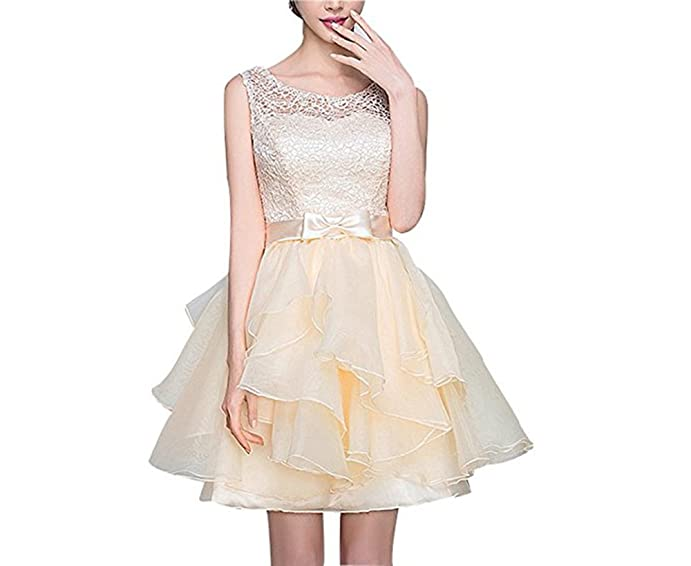 Mr.ace Homme Womens Lace Up Back Lace Applique Homecoming Dresses MR33