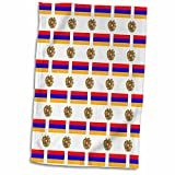 3dRose 777images Flag and Crest Patterns - The flag and Coat of Arms of the Republic of Armenia make a colorful patriotic Armenian pattern. - 12x18 Hand Towel (twl_63234_1)