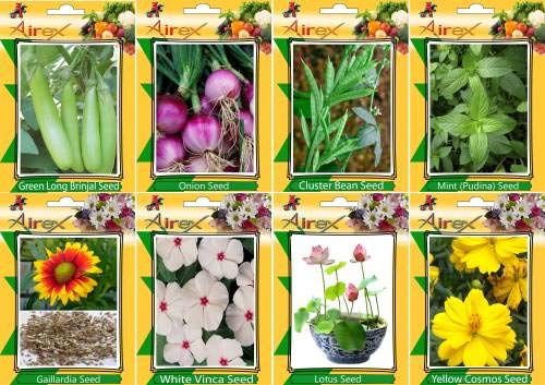 Shopmeeko SEED Green Long Brinjal, Onion, Cluster B, Mint (Pudina), Gaillardia, White ca, and Yellow Cosmos Seed + Humic (For Growth of All and Better Responce) 15 gm Humic + (Pack Of 40 seed * 4 Per Pkts of Vegetables) + (Pack Of 40 Seed * 3 Per Pkts Flow