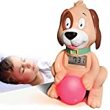 Big Red Rooster BRRC105 Sleep Training Alarm