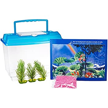 Penn plax goldfish betta fish bowl with for Betta fish tanks amazon