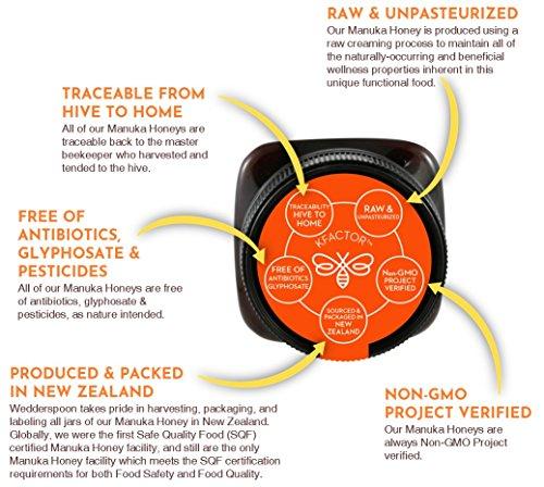 Wedderspoon Raw Premium Manuka Honey KFactor 16, 8.8 Oz, Unpasteurized, Genuine New Zealand Honey, Multi-Functional, Non-GMO Superfood by Wedderspoon (Image #4)